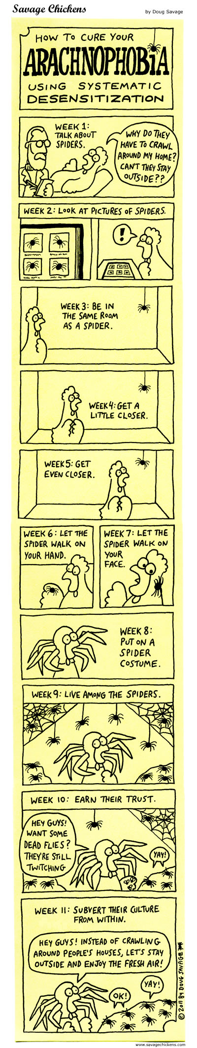 How To Cure Your Arachnophobia