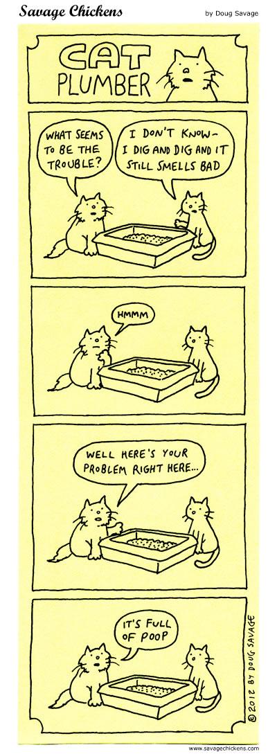 Cat Plumber