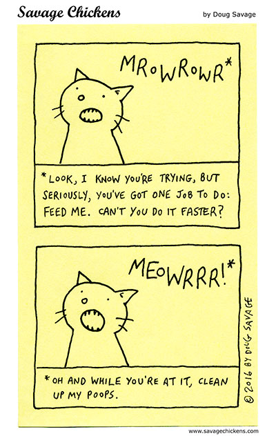 Cat Translation