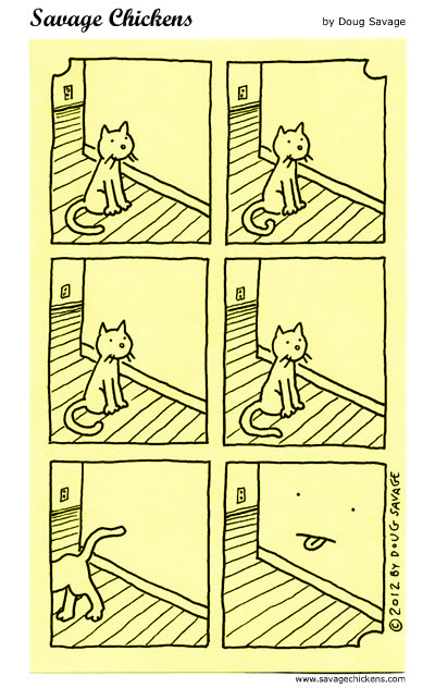 Why Do Cats Stare at Walls?