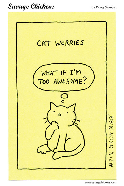 Cat Worries