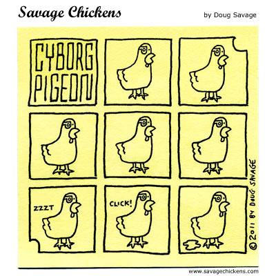 Cyborg Pigeon