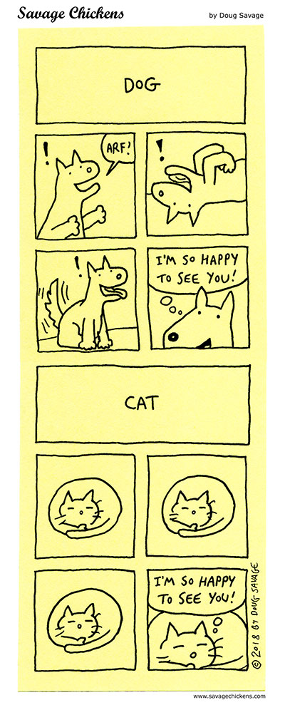 Dog vs Cat