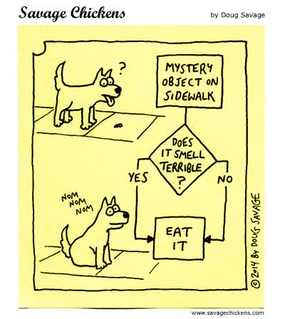 Dog Workflow