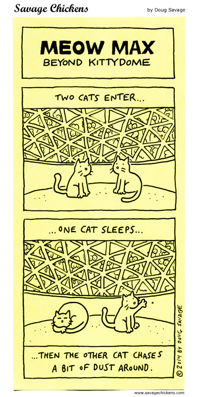 Kittydome