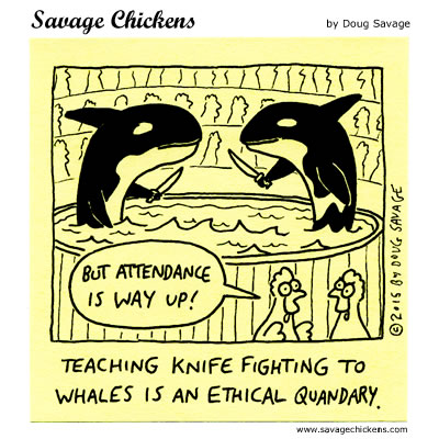 The Whale Show