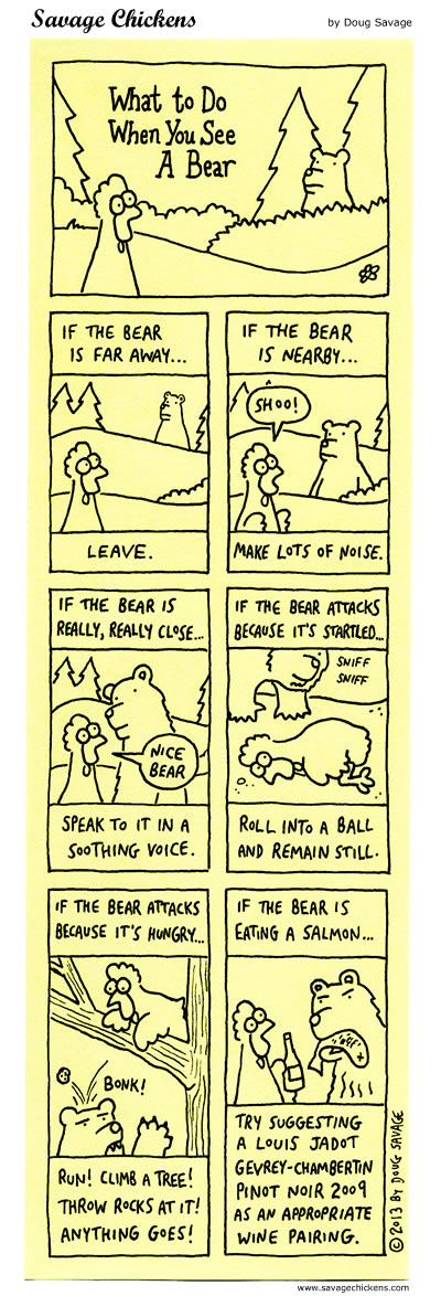 What To Do When You See A Bear