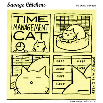 Time Management Cat