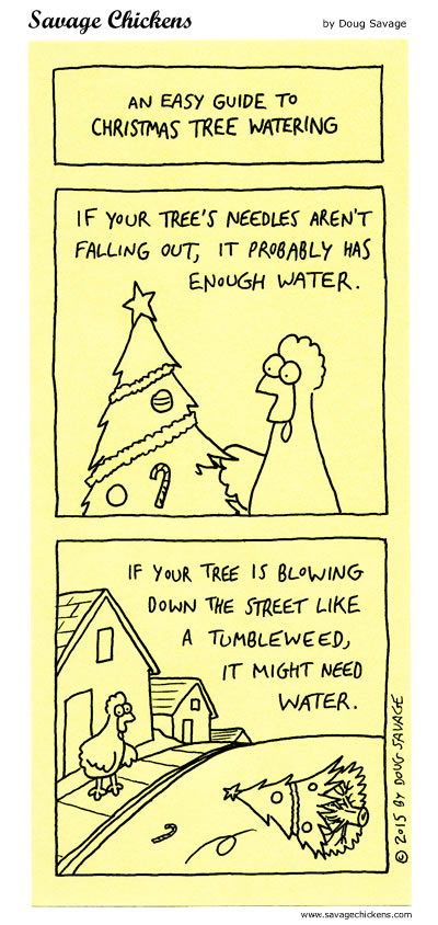 Christmas Tree Watering