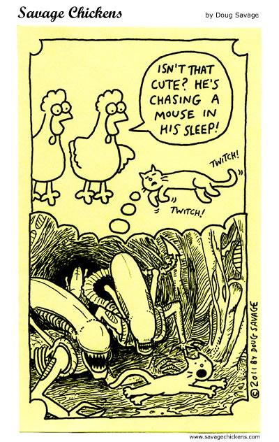 Cat Dreams