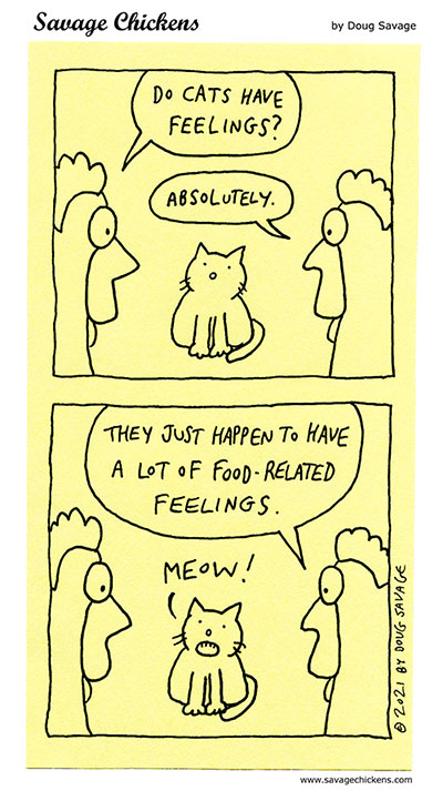 Cat Feelings