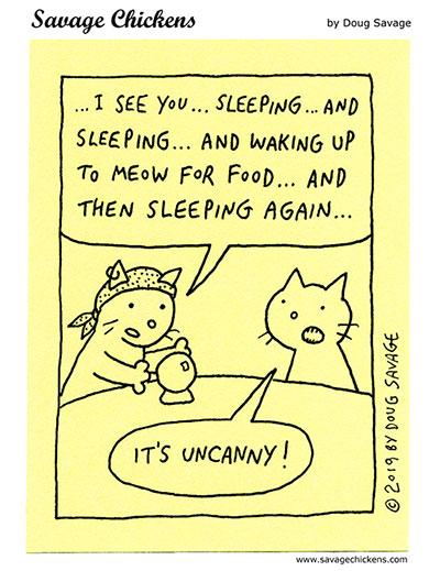 Cat Psychic