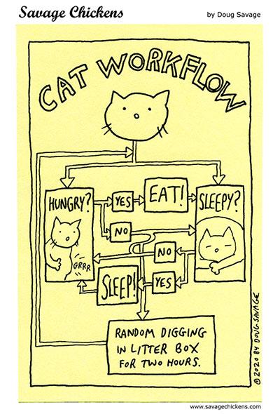 Cat Workflow
