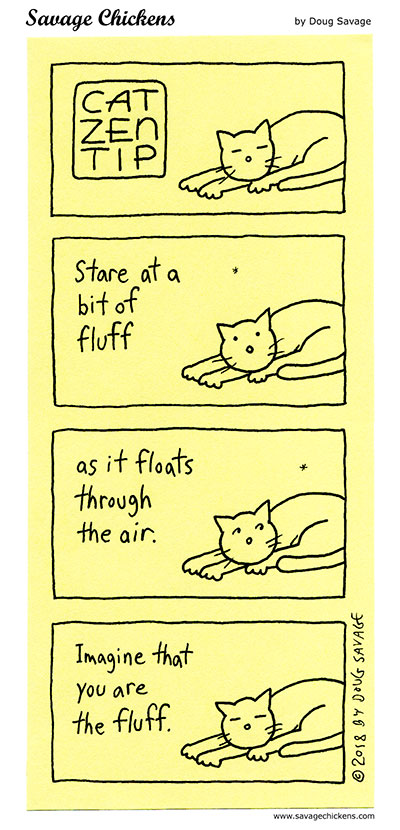 Cat Zen Tip 3