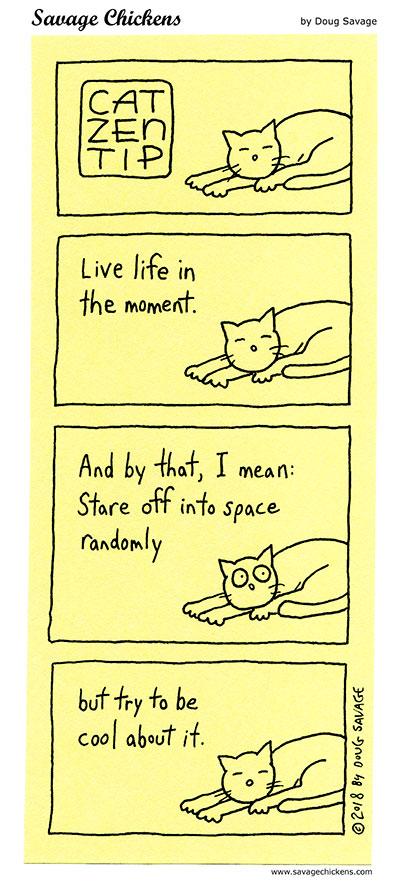 Cat Zen Tip 4