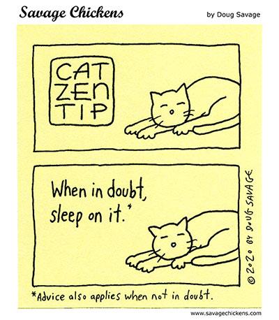 Cat Zen Tip 6