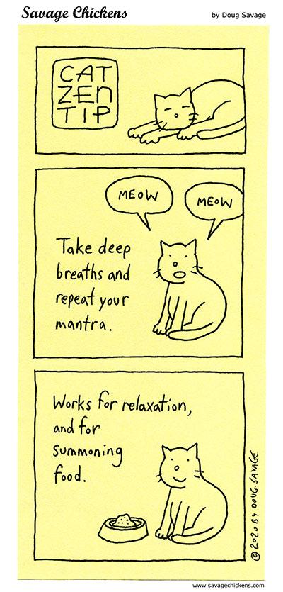 Cat Zen Tip 7