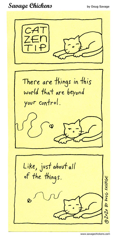Cat Zen Tip 8