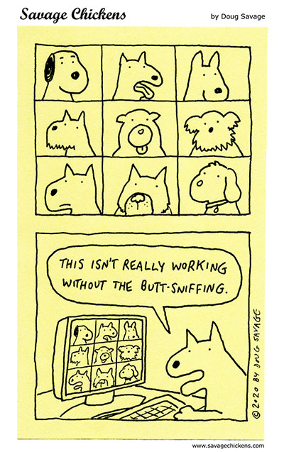 Dog Distance